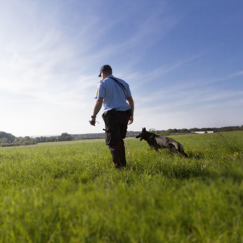 Hundefører og patruljehund
